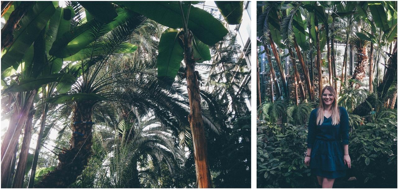 7 nagłówek mia gold zielona sukienka butelkowa zieleń z falbankami czarne muszkieterki za kolano deichmann blond fryzury modne 2018 ombre somblre daniel wellington sesja w palmiarni skórzany pasek palmy łódź