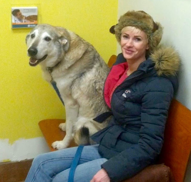 """Emmy at the vet with her dog Honey Pie Cute Litter """"Fucher"""". marchmatron.com"""