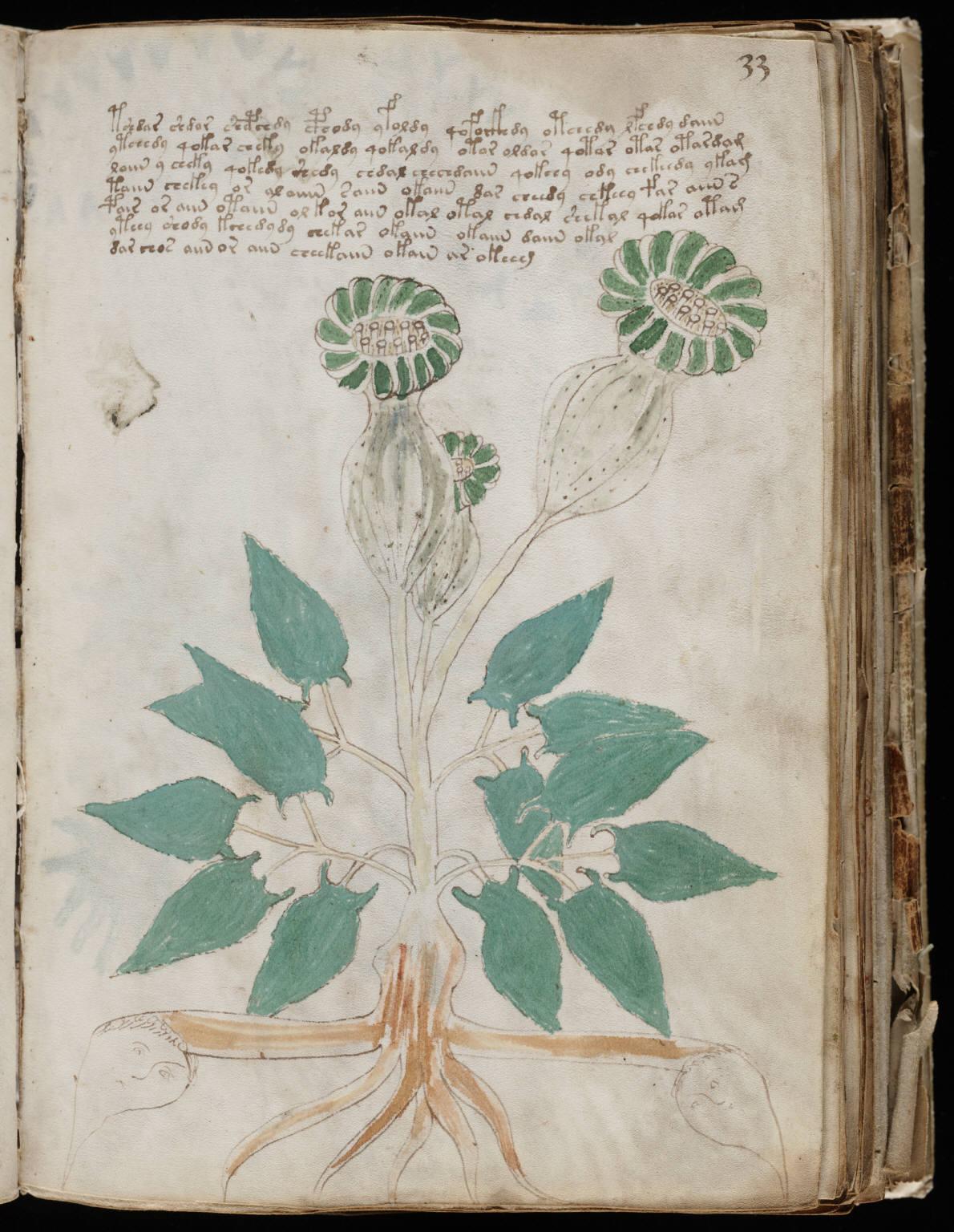 manuscrito063