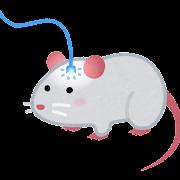 光ファイバーが繋がれたマウスのイラスト