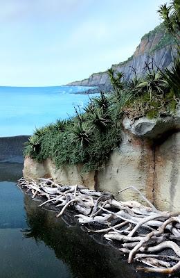 Diorama of bush by the sea.
