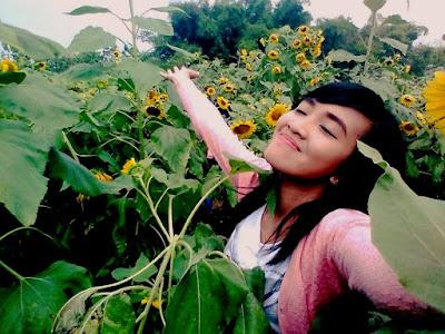 wisata-baru-kediri-kekinian-ladan-bunga-matahari