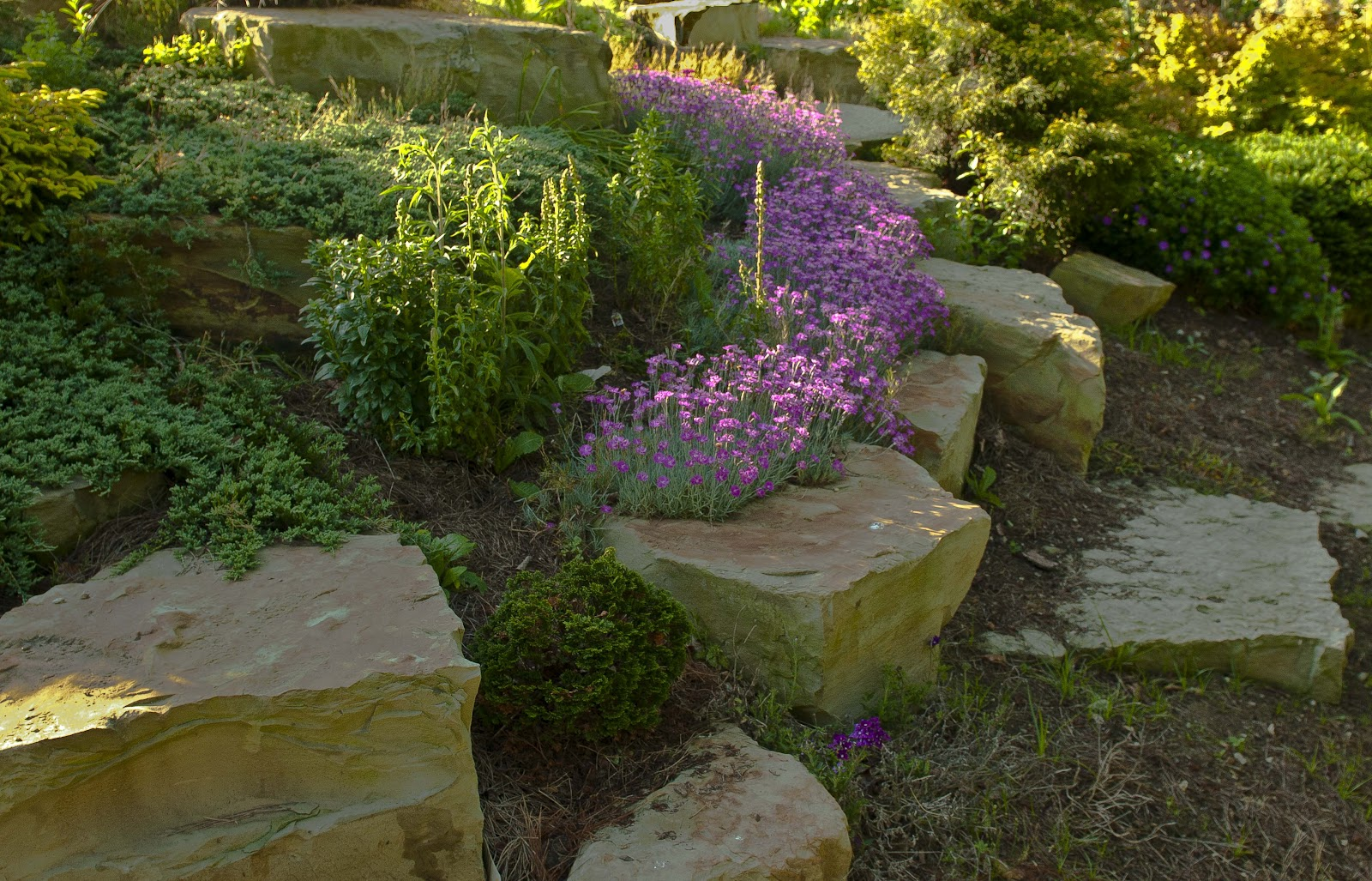 Kentucky native plant and wildlife rock gardens a great for Landscaping rocks merced ca