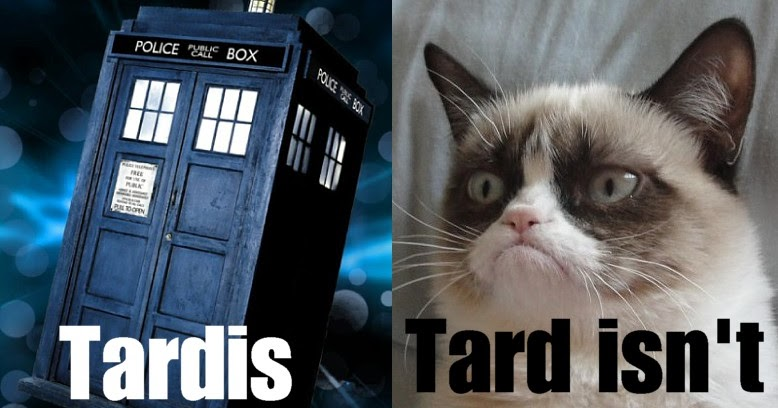 Grumpy Cat - The Rock'n'Roll years: Grumpy cat meets Dr Who