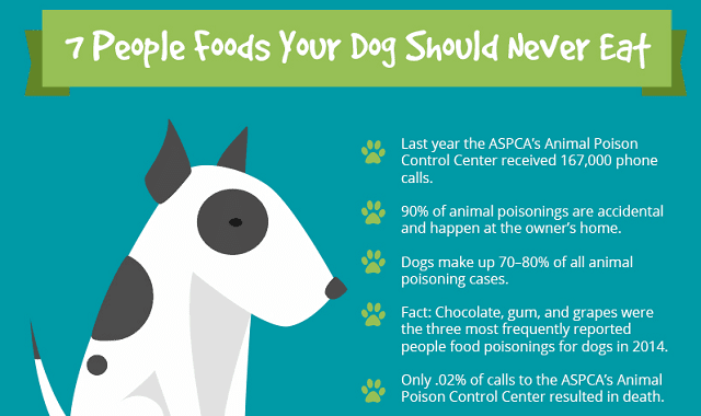 7 People Foods Your Dog Should Never Eat