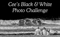 https://ceenphotography.com/2016/07/28/cees-black-white-photo-challenge-large-subjects-2/