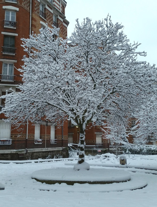 Daylight view of the a tree coated with snow..