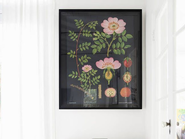 Get Your Inspiration: Botanical Print