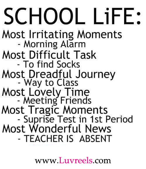 Funny Quotes About School: Funny Pictures Gallery: Quotes About School, Funny Quotes
