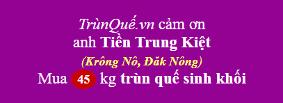 Trùn quế huyện Krông Nô, Đăk Nông