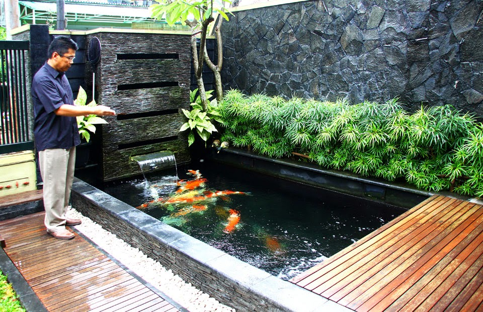 Taman Kolam Ikan Minimalis Membuat Rumah Lebih Asri