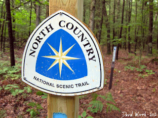north country national scenic trail marker sign, blue marker, manistee national forest trail