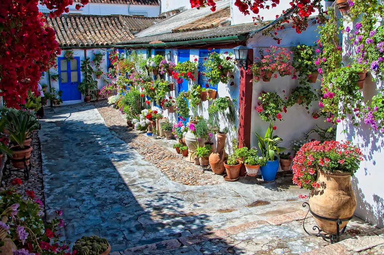 Los Patios de Córdoba en mayo