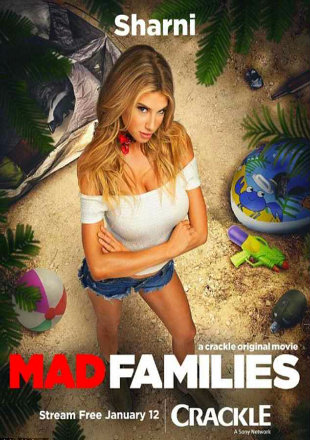 Poster of Mad Families 2017 Full Movie HDRip 720p English 700Mb at worldfree4u