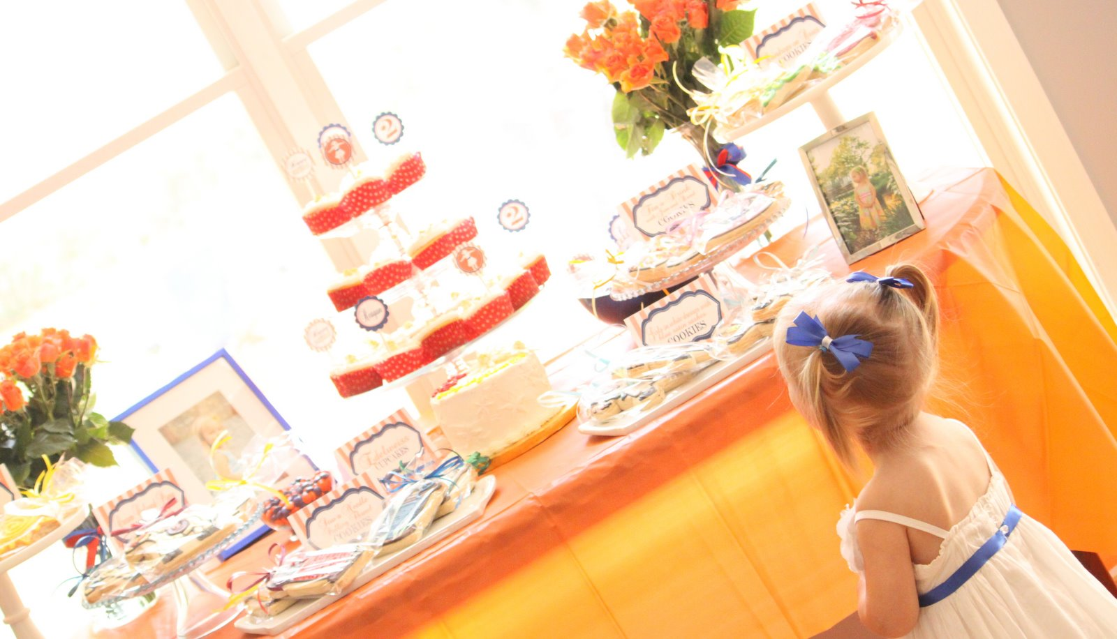 Nine to Five Mom: Reagan's Sound of Music Inspired Party