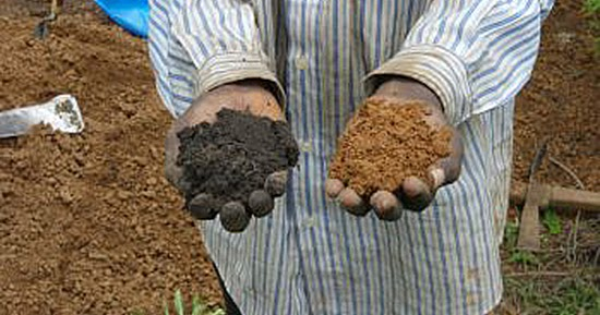 700 year old fertile soil technique could mitigate climate for Soil 2 year pgdm