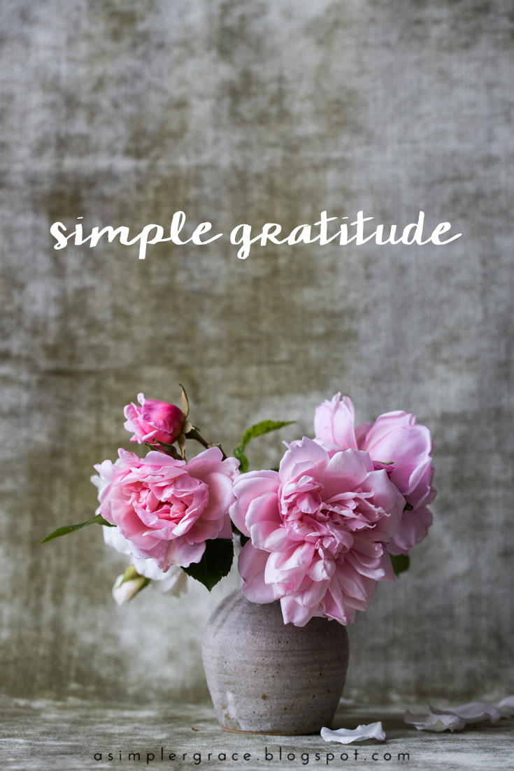 Simple Gratitude | 25 - A Simpler Grace - A weekly series focusing on practicing gratitude.