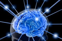10 Cara Meningkatkan Kecerdasan Otak