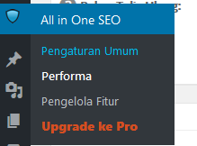 Cara setting plugin all in one seo pack