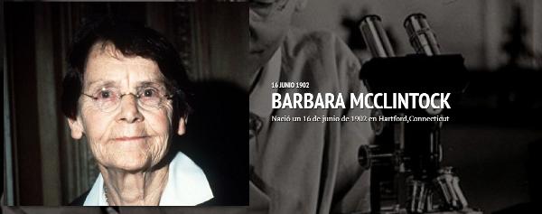 Bárbara Mcclintock Timeline