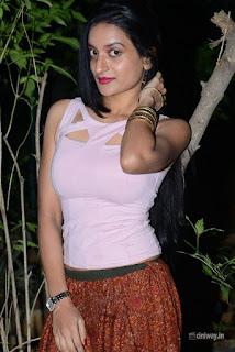 Janani Stills at Lakshmi Devi Samarpinchu Nede Chudandi Audio Launch