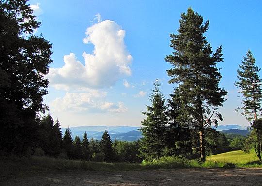 Przełęcz pod Średnicą (595 m n.p.m.).