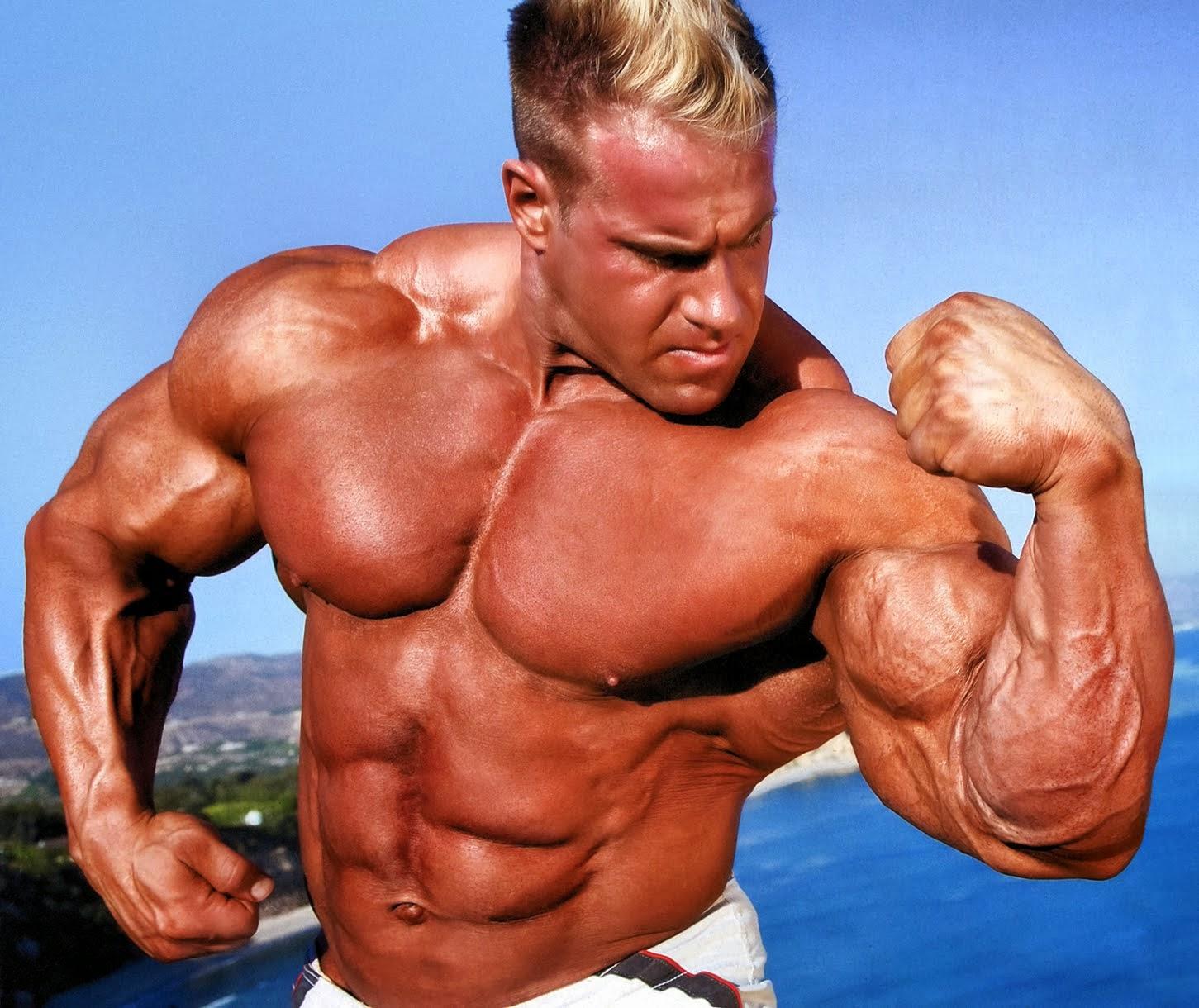 Body building proteine