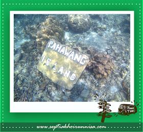Tugu bersejarah Pahawang Island bawah laut