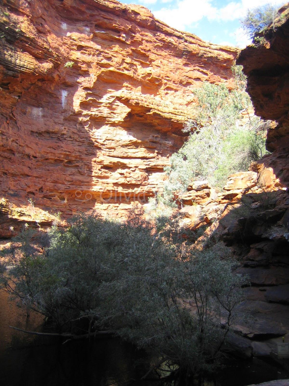 Garden of Eden, Kings Canyon, Australie