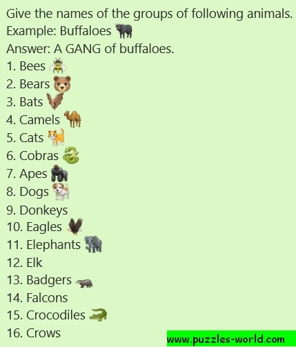 Give the names of the groups of animals