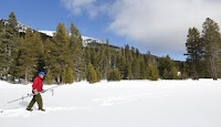 Frank Gehrke walks to one of the survey points during the first snow survey of winter conducted by the California Department of Water Resources in Phillips, California, December 30, 2015. (Credit: Reuters/Fred Greaves) Click to Enlarge.