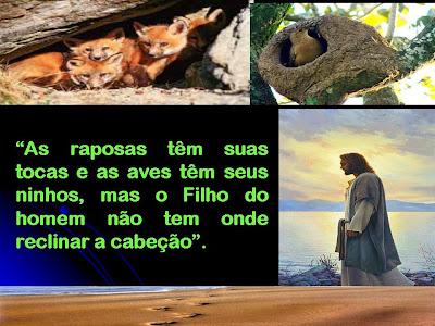 Resultado de imagem para As raposas têm suas tocas e as aves dos céus têm seus ninhos; mas o Filho do Homem não tem onde reclinar a cabeça