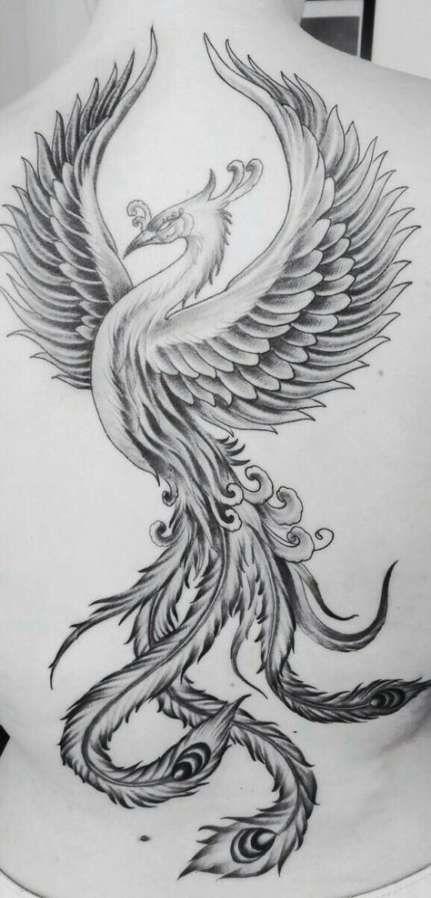 200 Tatuagens De Fenix 2019 Masculina Feminina Desenhos