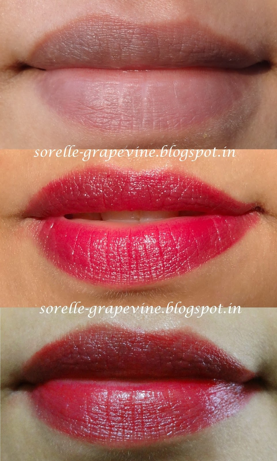 Sorelle GrapevineDior Rouge Lipstick Red Icon 757 - Swatch and Review