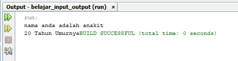 program input output java