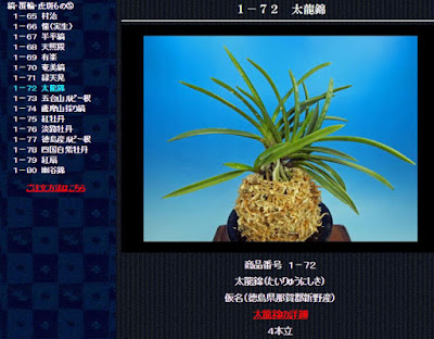 http://www.fuuran.jp/1-72.html