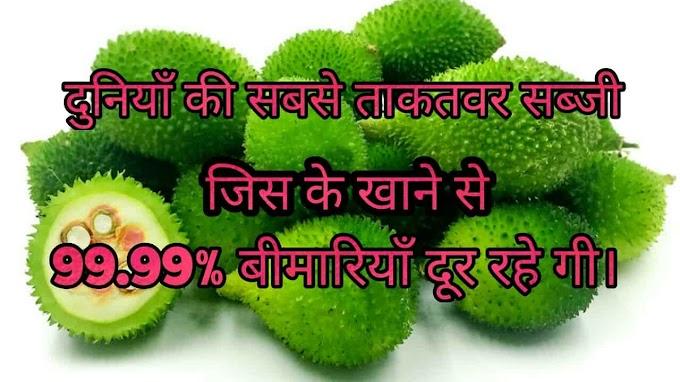 दुनियाँ की सबसे ताकतवर सब्जी कंटोला जिस के खाने से 99.99% बीमारियाँ दूर - Kantola in Hindi