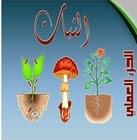النبات الجزء العملي PDF