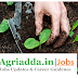 JRF Recruitment- Department of Soil Science (PAU)