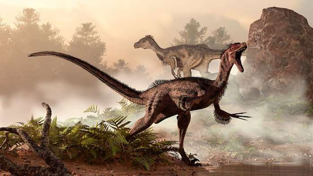 'Superlungs' gave dinosaurs the energy to run and fight