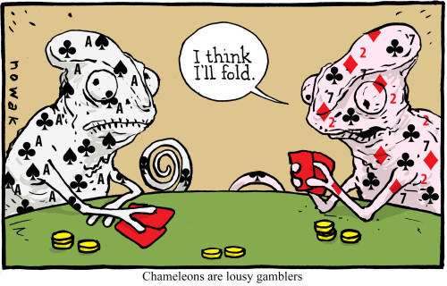 funny casino cartoon
