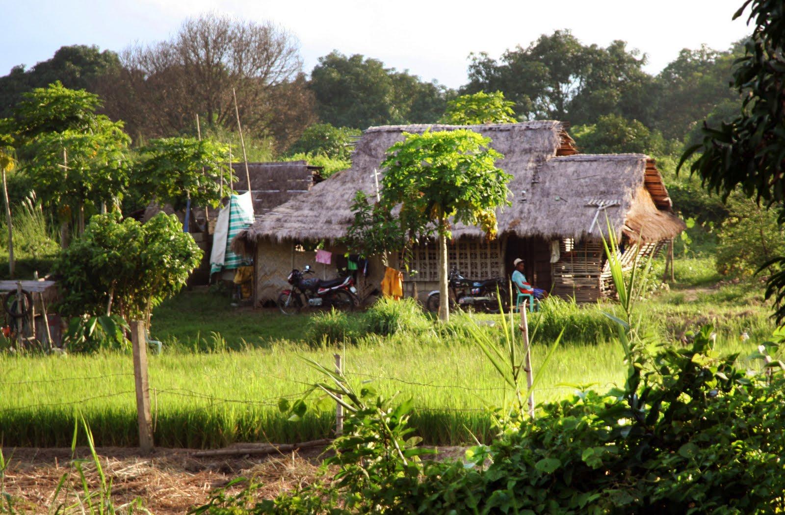 Open Bamboo Hut