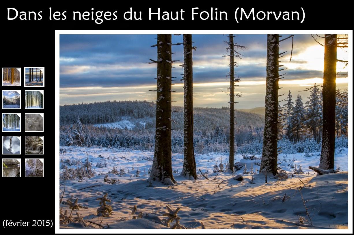 http://instantalautre.free.fr/galeries2015/hautfolin/