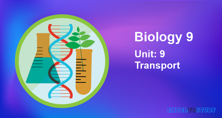 KIPS 9th Class Biology Notes Unit 9: Transport