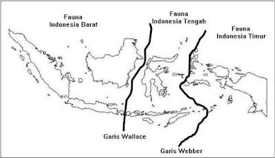 Soal Biologi : Berbagai Tingkat Keanekaragaman hayati di Indonesia + Jawaban