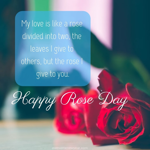 Rose Day Quotes for love