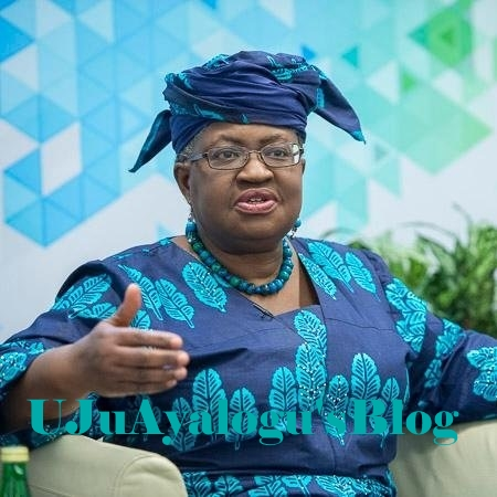 Corrupt people use NGOs as a front, says Okonjo-Iweala