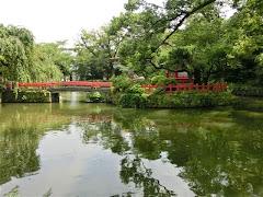 三嶋大社神池