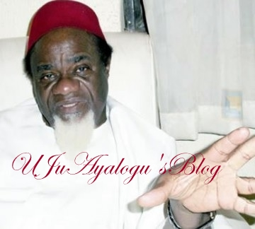 What Igbo leaders must tell Nnamdi Kanu – Ezeife