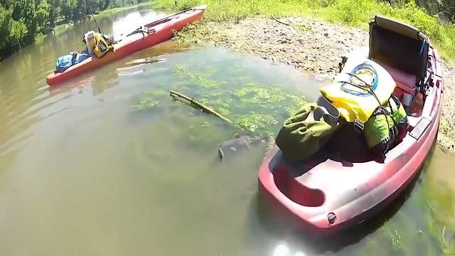 Το video που έχει ανατριχιάσει το διαδίκτυο: Ένα φίδι βρίσκεται στο νερό και μόλις δείτε τι κάνει θα μείνετε άφωνοι